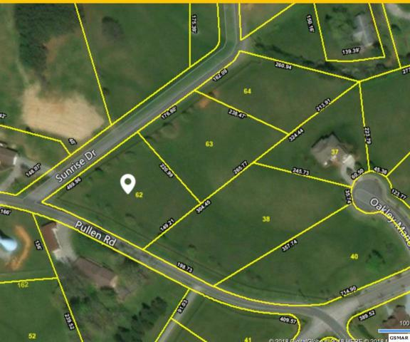 Lot 62 Sunrise Dr, Sevierville, TN 37862 (#215064) :: The Terrell Team