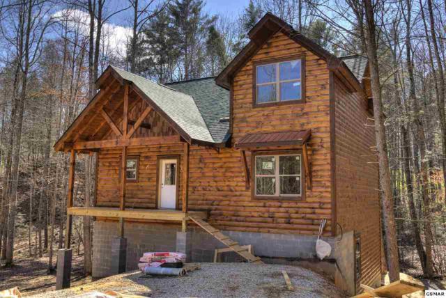 2313 Bogle Spring Loop, Sevierville, TN 37862 (#215079) :: Colonial Real Estate