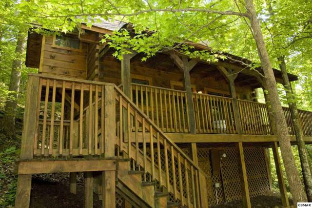 2919 Peregrine #49, Pigeon Forge, TN 37876 (#215084) :: Colonial Real Estate