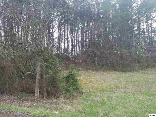 Lot 58 Battlefield Dr, Dandridge, TN 37725 (#215085) :: Colonial Real Estate