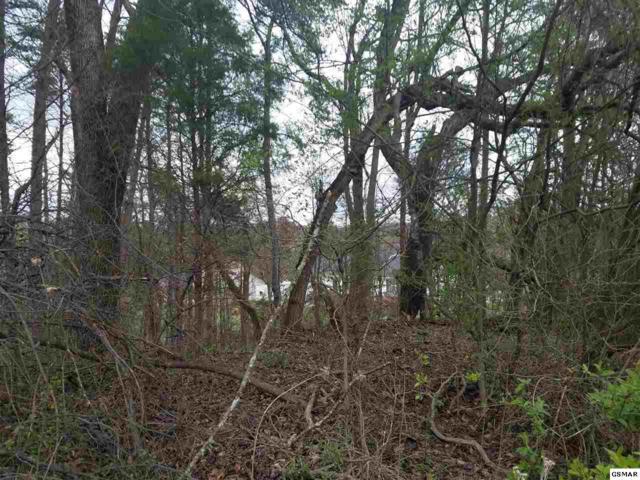 Lot 57 Battlefield Dr, Dandridge, TN 37725 (#215086) :: Colonial Real Estate