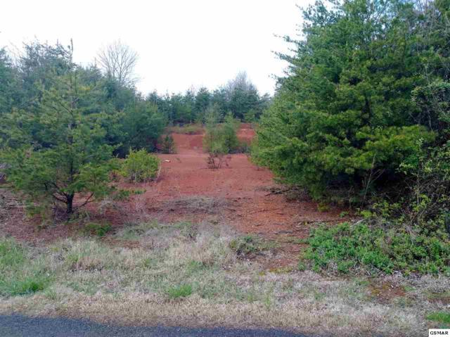 Ownby Drive Lot 1 R, Kodak, TN 37764 (#215089) :: Four Seasons Realty, Inc