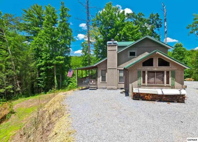4268 Breezy Trail Way, Cosby, TN 37722 (#215111) :: Four Seasons Realty, Inc