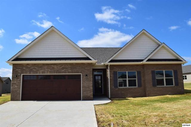 1227 Beaumont Ave, Sevierville, TN 37876 (#215113) :: Four Seasons Realty, Inc