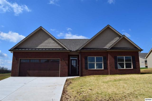 1219 Beaumont Ave, Sevierville, TN 37876 (#215114) :: Four Seasons Realty, Inc