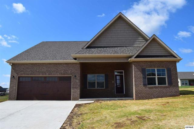 1223 Beaumont Ave, Sevierville, TN 37876 (#215115) :: Four Seasons Realty, Inc