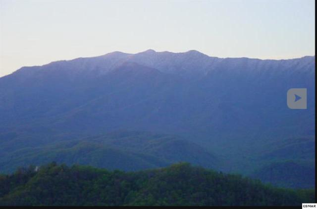 Lot 23 Laurel Top Way, Gatlinburg, TN 37738 (#215126) :: Four Seasons Realty, Inc