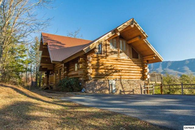 427 Coyote Rd, Gatlinburg, TN 37738 (#215130) :: Four Seasons Realty, Inc