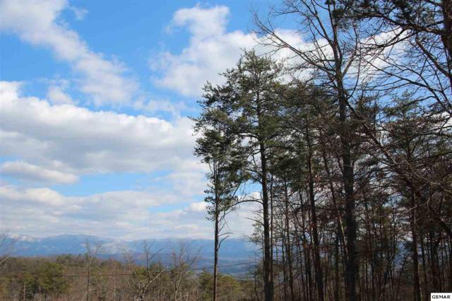 Lot 25 S Compton Dr, Tallassee, TN 37878 (#215155) :: Billy Houston Group