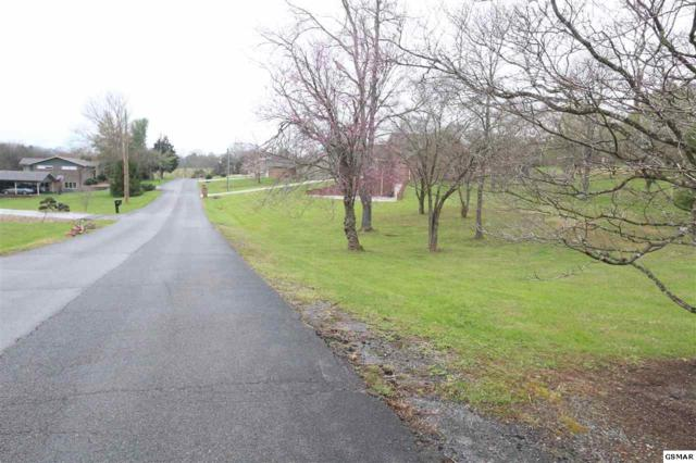 LOT 29 Evergreen, Sevierville, TN 37862 (#215160) :: Four Seasons Realty, Inc