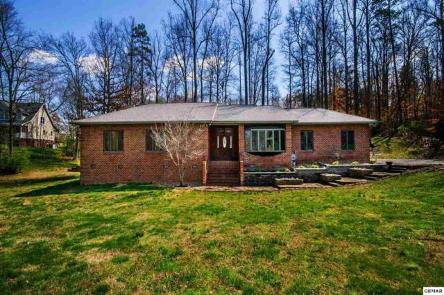 134 Mill Chase Drive, Strawberry Plains, TN 37871 (#215168) :: Four Seasons Realty, Inc