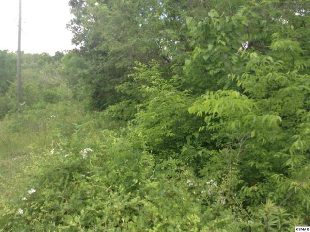 Lot 150 Eagle Feather Drive, Sevierville, TN 37876 (#215200) :: Billy Houston Group
