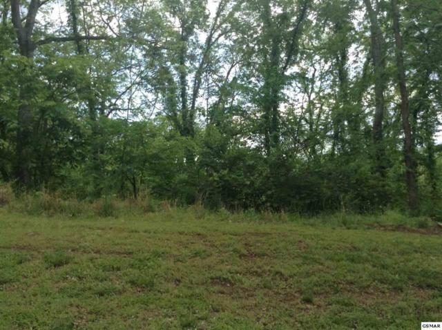 Lot 144 Eagle Feather Drive, Sevierville, TN 37876 (#215201) :: Billy Houston Group