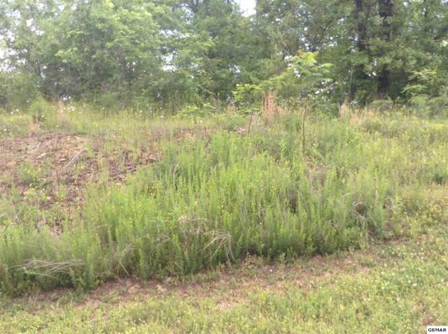 Lot 148 Eagle Feather Drive, Sevierville, TN 37876 (#215203) :: Billy Houston Group