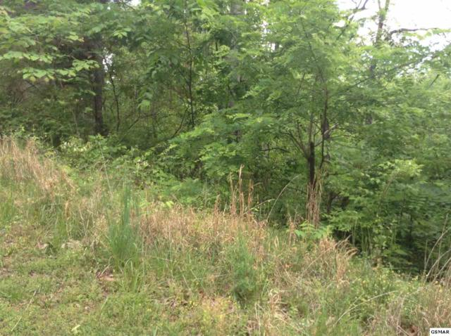 Lot 149 Eagle Feather Drive, Sevierville, TN 37876 (#215204) :: Billy Houston Group