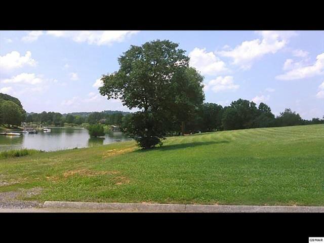 Lot 35 Wild Pear Trail, Dandridge, TN 37725 (#215205) :: Four Seasons Realty, Inc