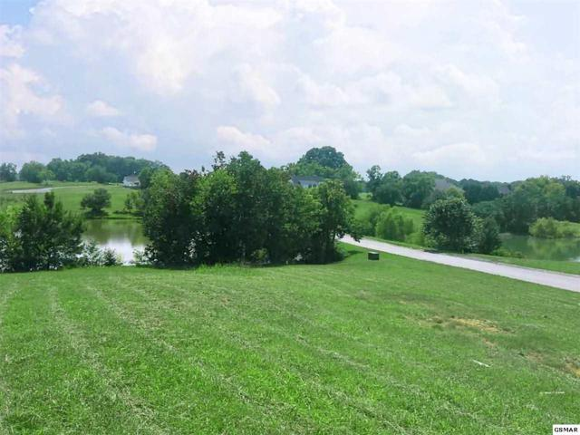 Lot 107 Wild Pear Trail, Dandridge, TN 37725 (#215206) :: Four Seasons Realty, Inc