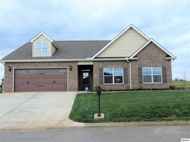 2175 Frewin Ct, Sevierville, TN 37876 (#215226) :: Colonial Real Estate