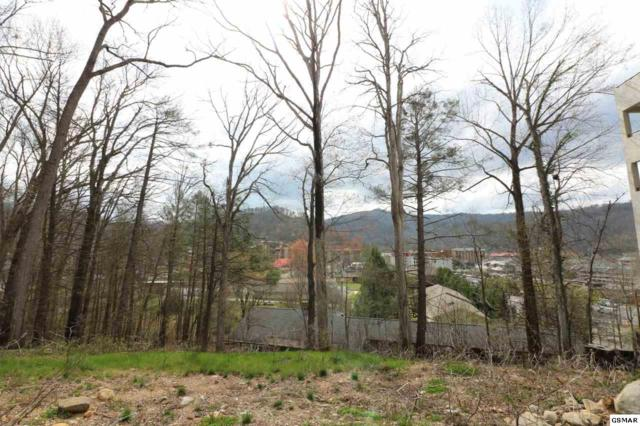 362 E Holly Ridge Rd, Gatlinburg, TN 37738 (#215235) :: Four Seasons Realty, Inc