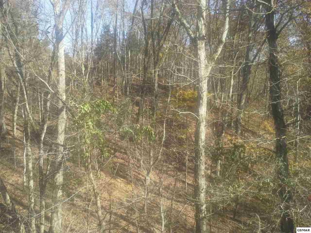 LOT 46 Tranquility Trail, Dandridge, TN 37725 (#215240) :: Billy Houston Group