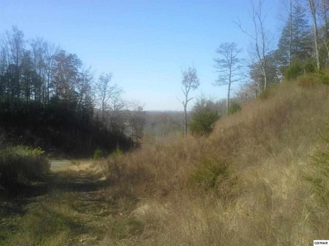 LOT 47 Tranquility Trail, Dandridge, TN 37725 (#215241) :: Billy Houston Group