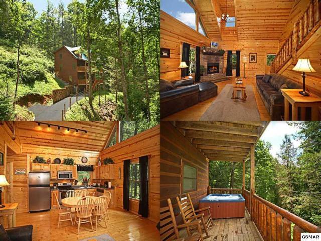 1614 Lamons Loop Endless Joy, Sevierville, TN 37876 (#215254) :: Four Seasons Realty, Inc