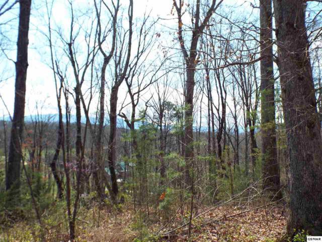 Lot 4 Meadow Brooke Way, Cosby, TN 37722 (#215258) :: Billy Houston Group