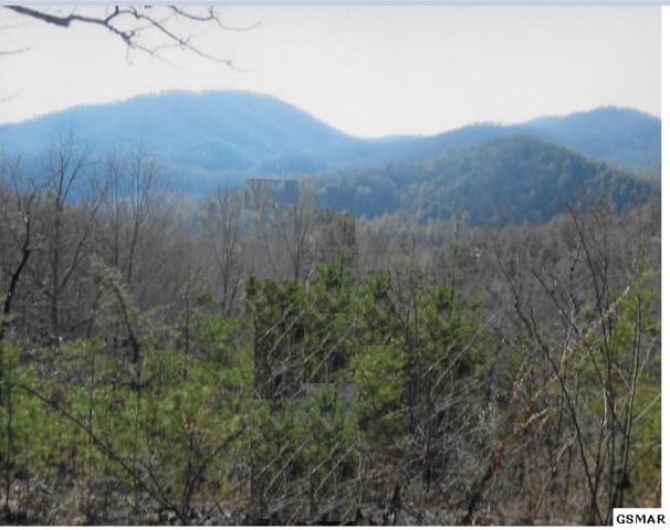 Tall Pines Way Tall Pines  Way, Sevierville, TN 37876 (#215277) :: Billy Houston Group