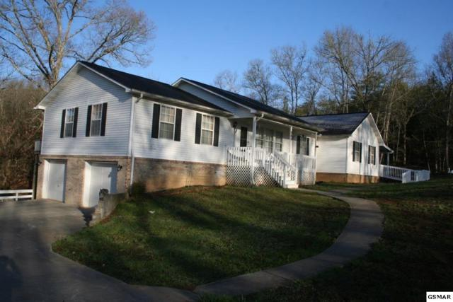 269 Amolee Ln, Sevierville, TN 37876 (#215288) :: Colonial Real Estate