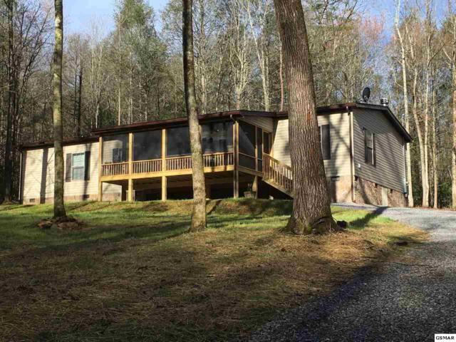 3946 Forest Trails Drive, Sevierville, TN 37876 (#215323) :: Colonial Real Estate