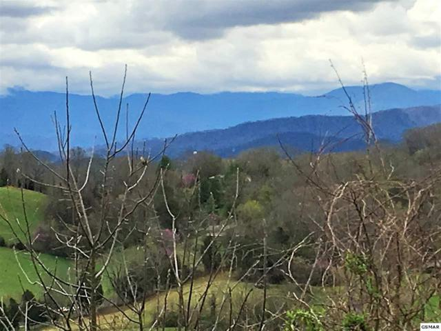 LOT 19 Maggie Mack Lane, Sevierville, TN 37862 (#215335) :: Billy Houston Group
