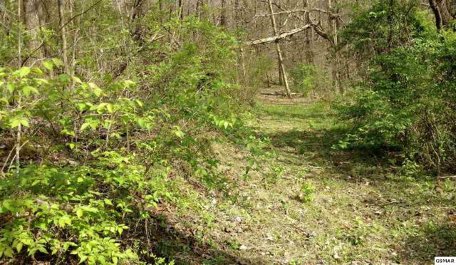 10 Acres Trentham Rd, Newport, TN 37821 (#215338) :: Four Seasons Realty, Inc
