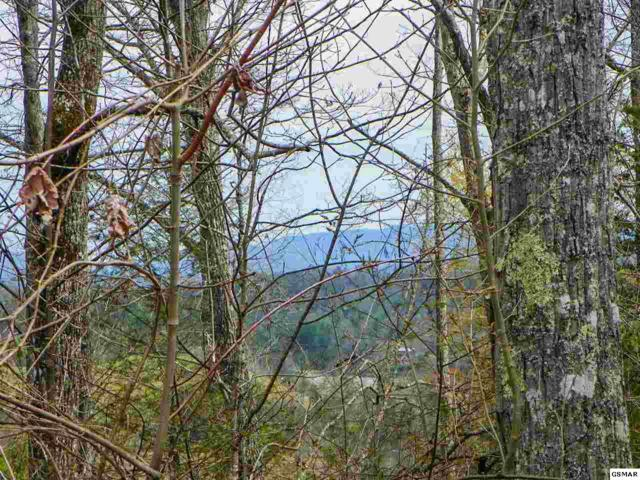 Lot#1 Shady Grove Road, Sevierville, TN 37876 (#215378) :: Billy Houston Group