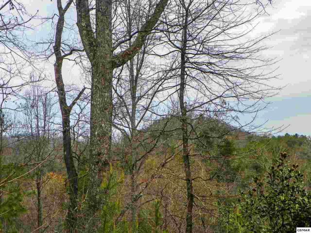 Lot# 2 Shadyview Ridge Road, Sevierville, TN 37876 (#215381) :: The Terrell Team