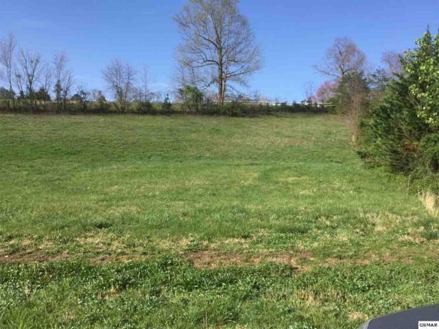 Lot 2-C Hatcher Mountain Way Off, Sevierville, TN 37862 (#215406) :: Billy Houston Group