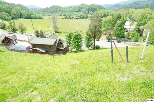 Lot 81R Stone Wood Way, Sevierville, TN 37863 (#215416) :: Billy Houston Group