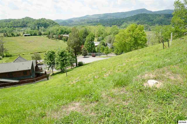Lot 79R Stone Wood Way, Sevierville, TN 37863 (#215417) :: Billy Houston Group
