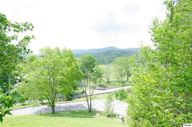 Lot 2 and 4 Mountain Lodge Way, Sevierville, TN 37862 (#215419) :: Billy Houston Group
