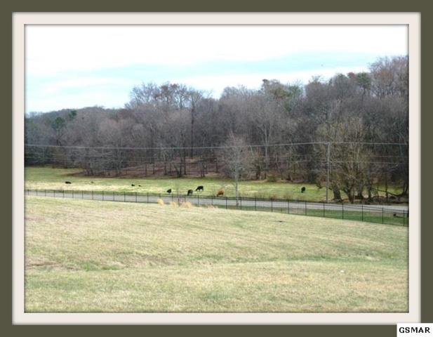 Lot 43 Rippling Waters Circle, Sevierville, TN 37876 (#215427) :: The Terrell Team