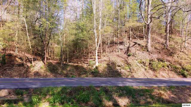 220 Glades Rd. Lot 2 Ely Acres, Gatlinburg, TN 37738 (#215428) :: Colonial Real Estate