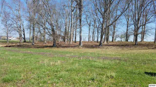Lot 113 Wild Pear Trail, Dandridge, TN 37725 (#215437) :: Four Seasons Realty, Inc