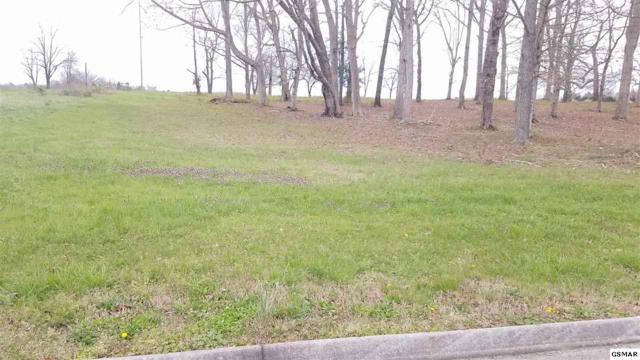 Lot 116 Wild Pear Trail, Dandridge, TN 37725 (#215443) :: Four Seasons Realty, Inc