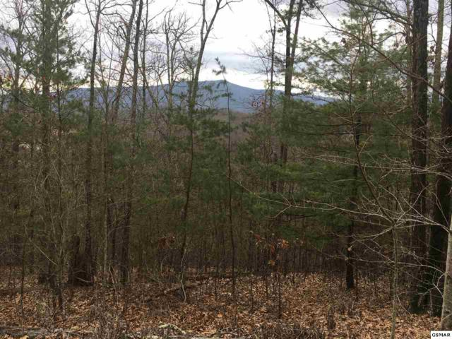 LOT 7E Stackstone Road, Sevierville, TN 37862 (#215500) :: Four Seasons Realty, Inc