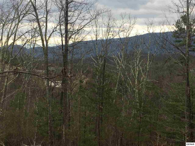 Lot 18E Stackstone Road, Sevierville, TN 37862 (#215501) :: Four Seasons Realty, Inc