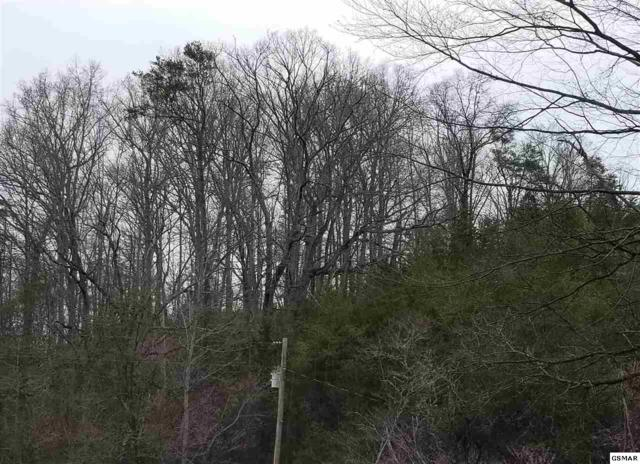 Lot 17 Hardin Lane, Sevierville, TN 37862 (#215505) :: Billy Houston Group