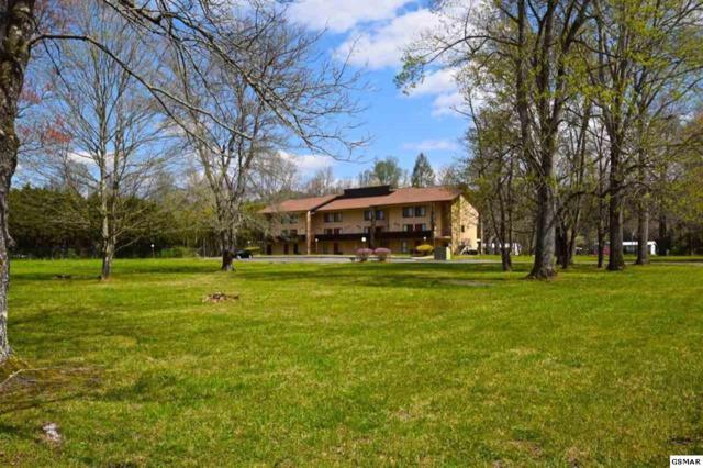 8019 Old Highway 73, U101, Townsend, TN 37882 (#215520) :: Colonial Real Estate