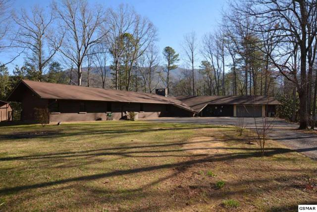 150 Hollow Rd, Cosby, TN 37722 (#215584) :: Colonial Real Estate
