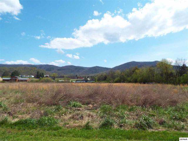 Lot 9 Padgett Mill Road, Cosby, TN 37722 (#215612) :: Billy Houston Group