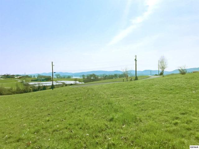 Lot 10, 11 & 12 Waterway Drive, Rutledge, TN 37861 (#215614) :: Billy Houston Group