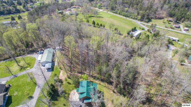 Lot 14 Dayne Drive, Sevierville, TN 37876 (#215625) :: Colonial Real Estate